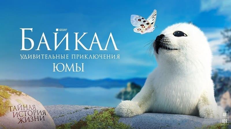 Байкал. Удивительные приключения Юмы, постер, дата выхода, кадры, трейлер
